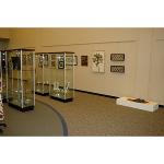 Visual Arts Faculty Exhibition