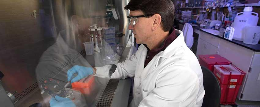 Dr. Jonathan Rayner working in lab.