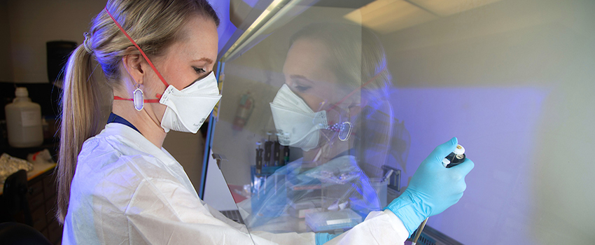 Meghan Hermance, Ph.D., assistant professor of microbiology and immunology, shown working in the lab, was awarded a two-year grant from the National Institute of Allergy and Infectious Diseases.