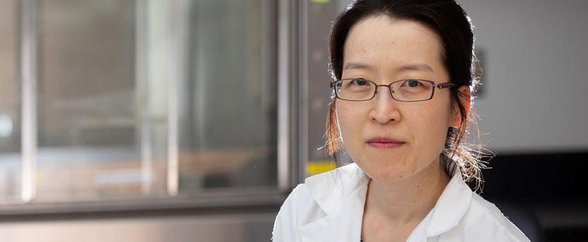 Dr. Ji Young Lee, assistant professor of physiology, cell biology and internal medicine at the University of South Alabama College of Medicine, recently received a $231,000 three-year Career Development Award from the American Heart Association. The grant will allow Dr. Lee to study the effects of acidosis on pneumonia.