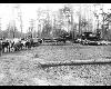 Thomas E. Armitstead Photo Gallery, transporting logs
