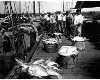 Erik Overbey Photo Gallery - fishing boats unloading