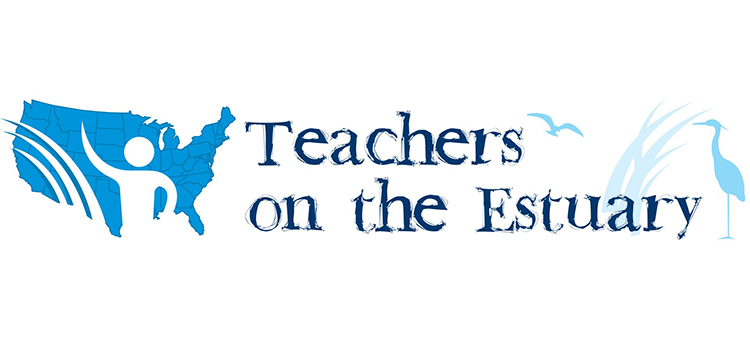 Teachers on the Estuary Logo