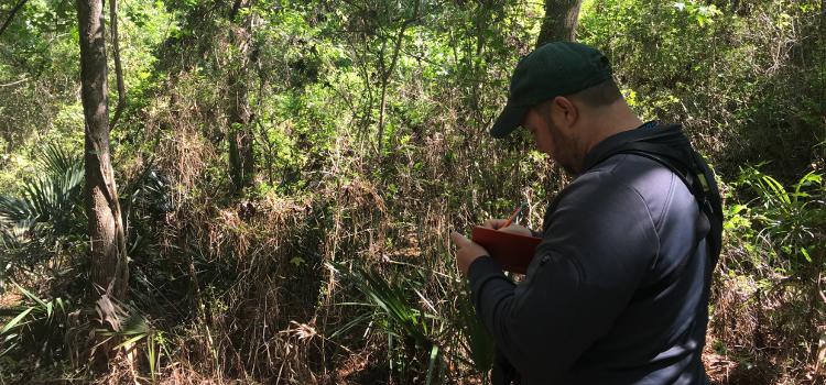 Upcoming bird outreach events featuring Joel Borden