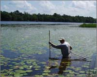 Sampling aquatic plant communities
