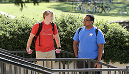 Two male students standing on stairs outside talking.