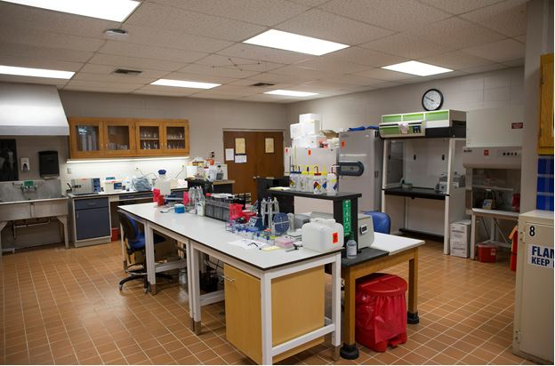 Molecular and Biochemistry Exercise Research Lab