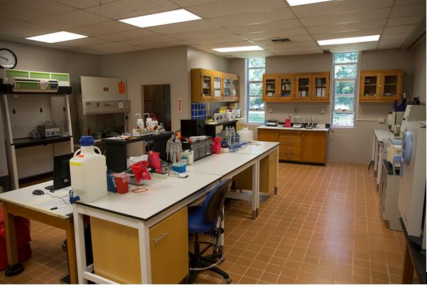 Molecular and Biochemistry Exercise Research Laboratory