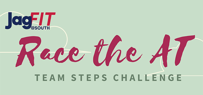 Take the Appalachian Trail Team Step Challenge