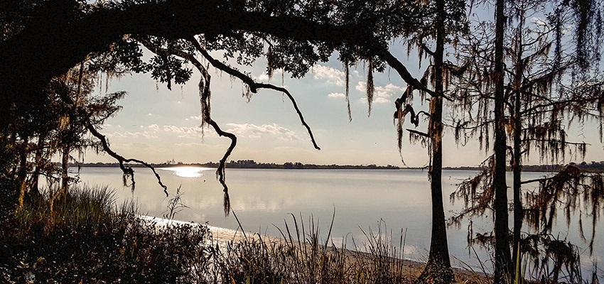 Day Trip: A Day on the Delta