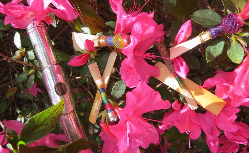 Reeds and instruments laying in bed of pink azaleas