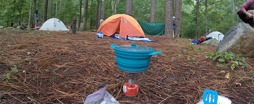 Tents and supplies in the forest