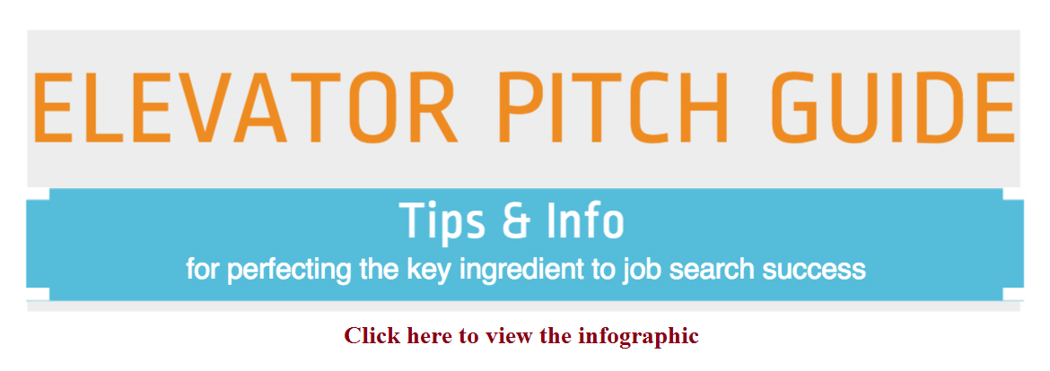 Elevator Pitch Infographic