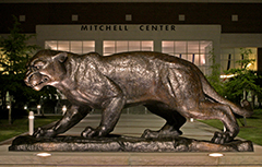 Jaguar Statue in front of Mitchell Center