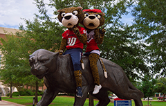 Southpaw and Miss Pawla sitting on the jag statue