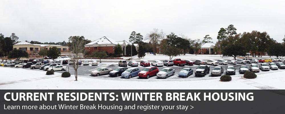 Winter Break 2018