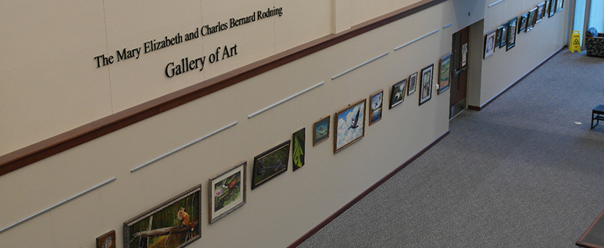 Library Art Gallery