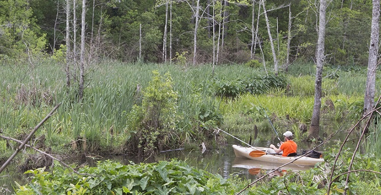South will kick off its environmental observance from 9-11 a.m. on Sunday with a clean-up of trash from three waterways along the Glen Sebastian Nature Trail.