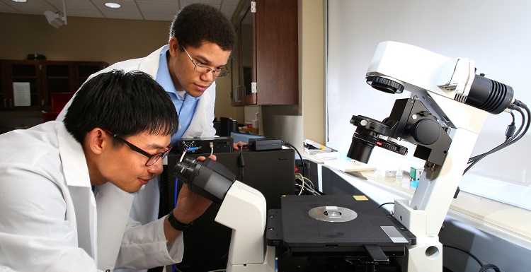 Phiwat Klomkaew, left, a junior chemical engineering major, and Kevin Ingles, a junior math and physics major, will present scientific papers at the 94th Alabama Academy of Sciences annual meeting.