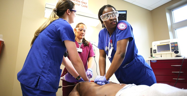 Nursing student Carole Aomo, performs CPR on a simulated human patient with the assistance of nursing and physician assistant students during a real-time mass casualty drill at the University of South Alabama.