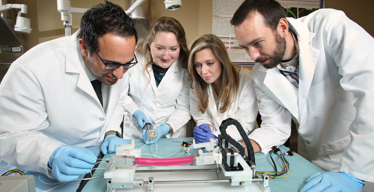 Dr. Saami Yazdani, associate professor of mechanical engineering, feeds a balloon catheter through a pig artery with, from left, Claire Cawthon and Kathryn Cooper, gap-year research assistants, and mechanical engineering major Clifton Huett at Yazdani's lab in the College of Engineering. data-lightbox='featured'