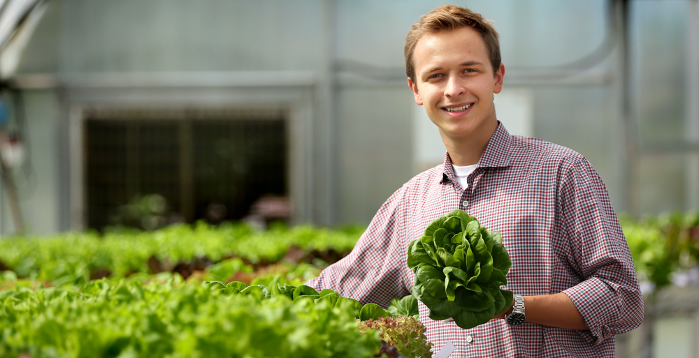 Zane Patterson's official title at Shipshape Urban Farms is account manager. But working at a start-up means pitching in wherever he's needed, and Patterson said he thrives on that culture.