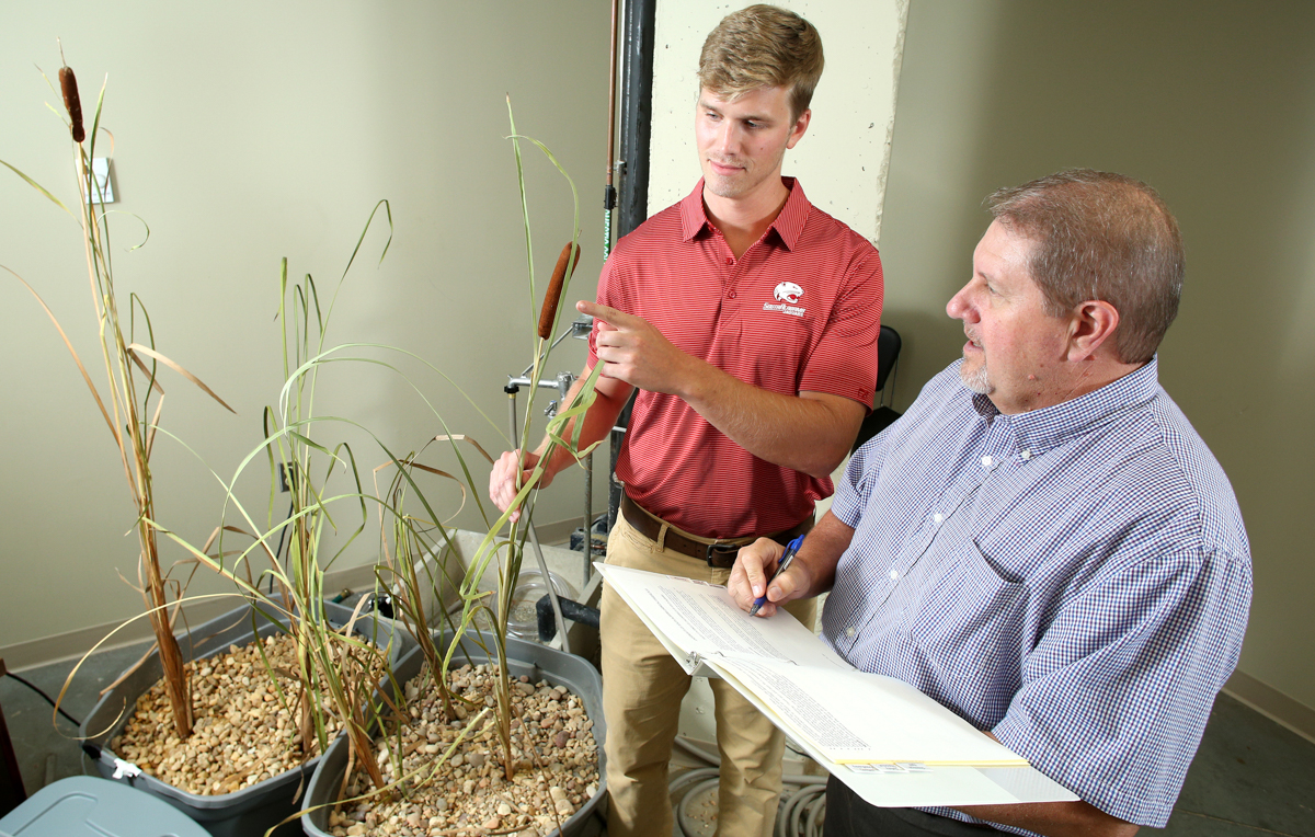 Creative solutions to the wastewater problems plaguing some rural Alabama counties could include onsite wetlands. University of South Alabama professor Dr. Kevin White and graduate student Brandon Maliniemi have set up an experimental wetland in a Shelby Hall lab to assess the possibility.