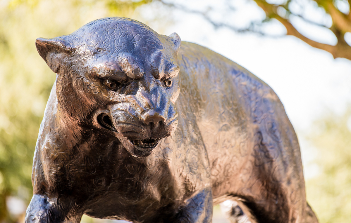 University of South Alabama Jaguar statue