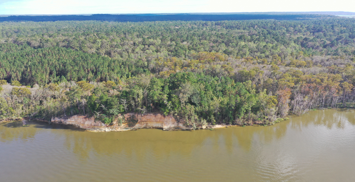 The University of South Alabama holds the easement to 60 acres adjacent to Historic Blakeley State Park along the Tensaw River. The property, in addition to more than 30,000 acres throughout rural Alabama and Mississippi, can be used by South faculty for research and teaching.