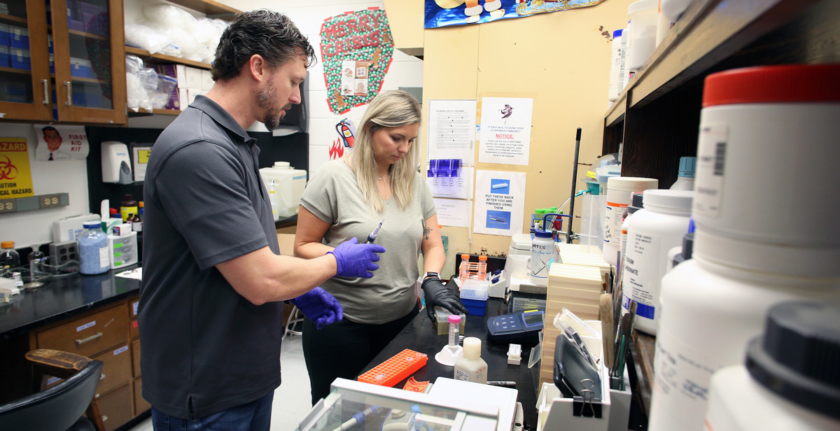 Mike Fletcher and Amber Simpson, a pair of Mobile County public school science teachers, do lab work during a six-week summer program for high school educators at the University of South Alabama.