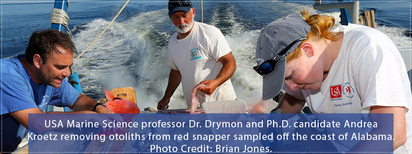 USA Marine Science professor Dr. Drymon and others sample red snapper from Gulf of Mexico