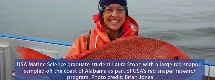 Graduate Student Laura Stone samples a red snapper for USA's Red Snapper research program
