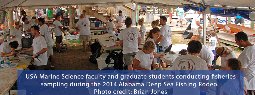 USA Marine science faculty and students conduct research during the 2014 Deep Sea fishing rodeo