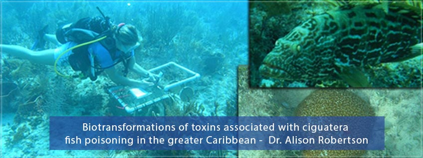 Biotransformations of toxins associated with fish poisoning by Dr. Alison Robertson