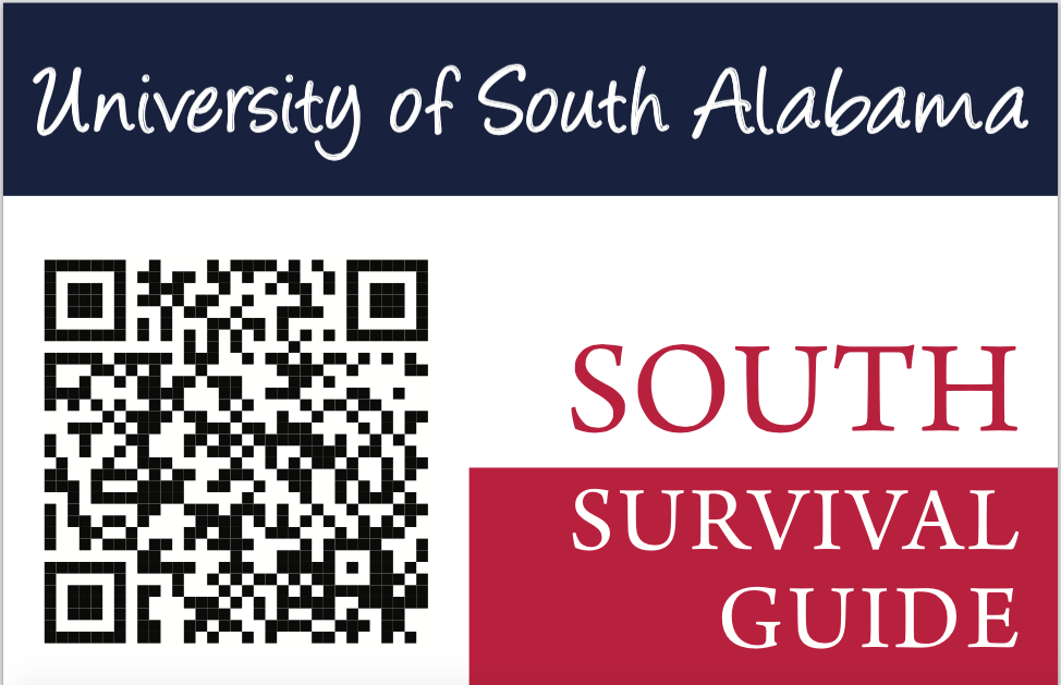 The South Survival Guide