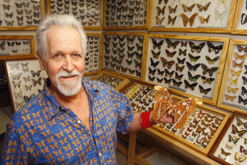 Dirk Bayer standing in front of butterfly collection and holding butterfly with 6