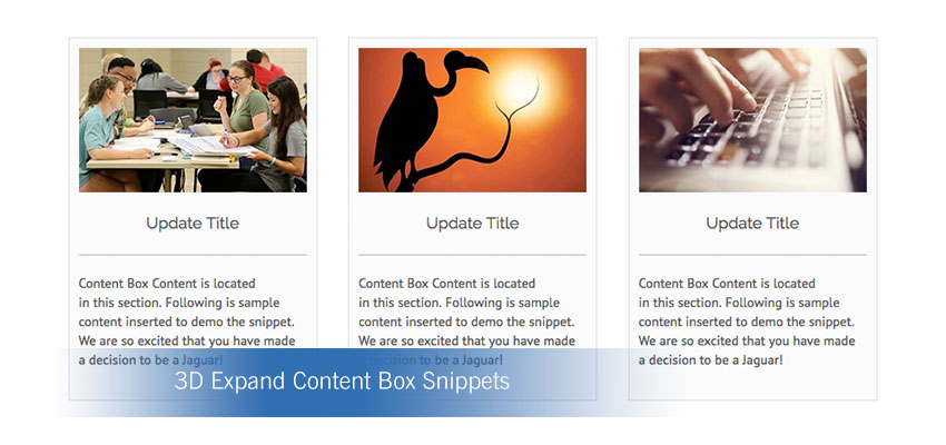 3D Expand Content Box Snippets