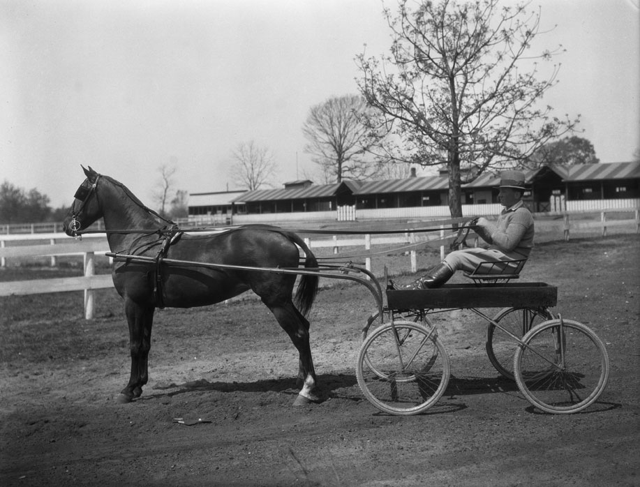 An unidentified man sits in a buggy while holding the reins of his horse. The photo was taken at Arlington Fairgrounds, which was located along Mobile Bay, about 1925.