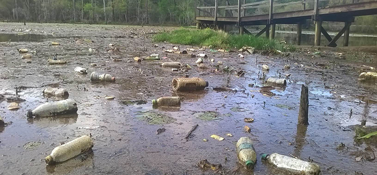 plastic bottles floating in muddy water